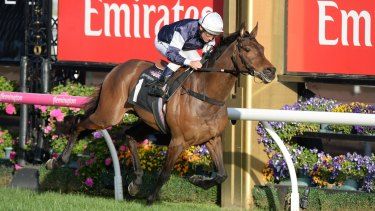 Jockey Damien Oliver on Almandin wins  the Japan Racing Association Trophy at Flemington  on Saturday.