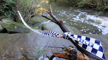 The woman's body was found beside a creek in the Berowra Valley Regional Park.