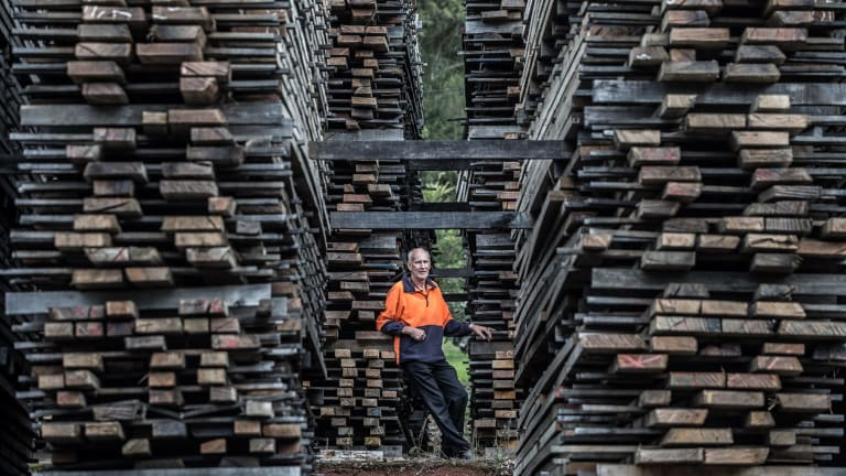 Harold Fox, proprietor of Powelltown Sawmills, says the proposed Great Forest National Park would mean the end for his business.