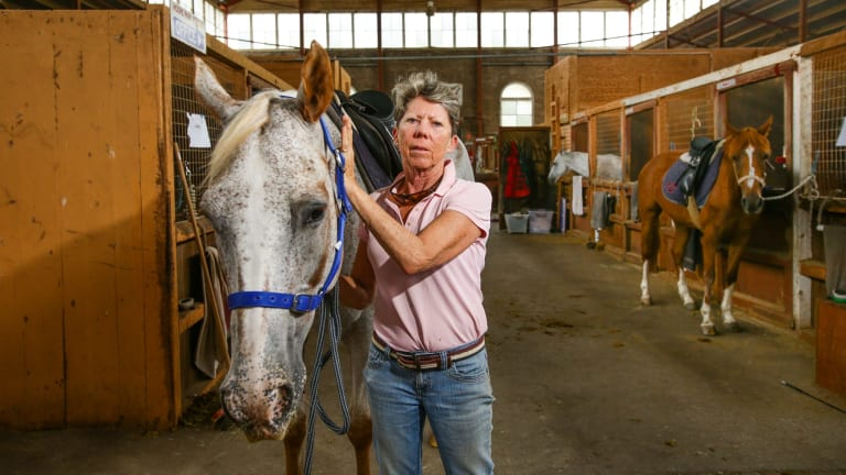 Centennial Park Riding School Pushed Out For Mechanical
