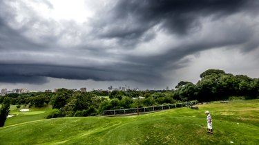 Clover Moore has called for Moore Park Golf Course to be reduced to nine holes.