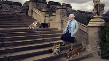 Showing the Queen when she is most at ease on the steps at the rear of the East Terrace and East Garden with four of her beloved corgis and dorgis.