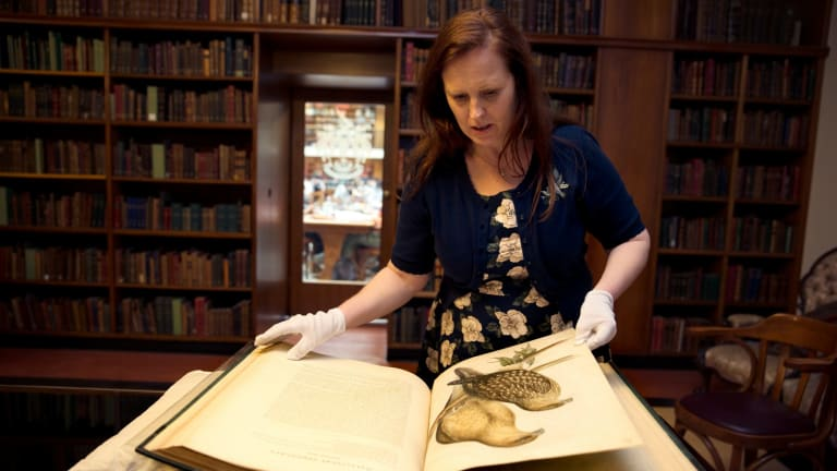 Author Melissa Ashley, who has written a novel based on the life of Elizabeth Gould, the wife of famous bird artist John Gould.