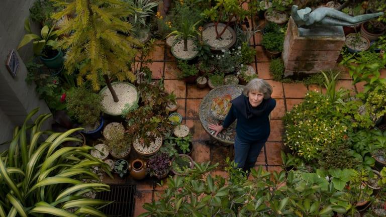 Caroline Davies, president of the Mediterranean Garden Society in her courtyard garden.