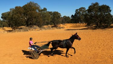 Kerryn Manning trains Arden Rooney  at her Great Western property.
