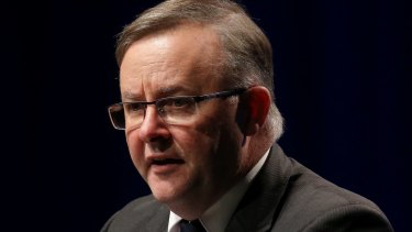 The proposed changes have prompted Labor frontbencher Anthony Albanese to consider switching from the neighbouring seat of Grayndler to challenge for Barton.