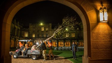 Sydney University Grounds Manager Mark Moeller and ground staff with a jacaranda tree which was successfully cloned from the original tree in the main quadrangle.