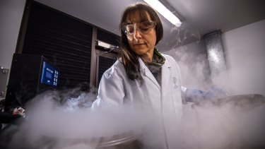 Dr Karen Sommerville removes seed material out of a liquid-nitrogen-cooled storage chamber at the Australian PlantBank.