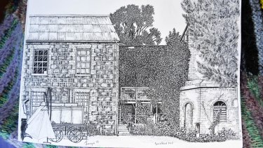 One of Jacqui's recent drawings.