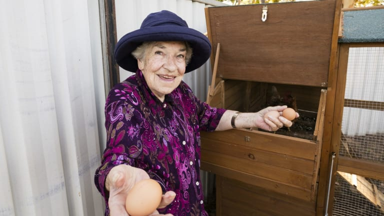Residents help tend the chickens and collect the eggs.