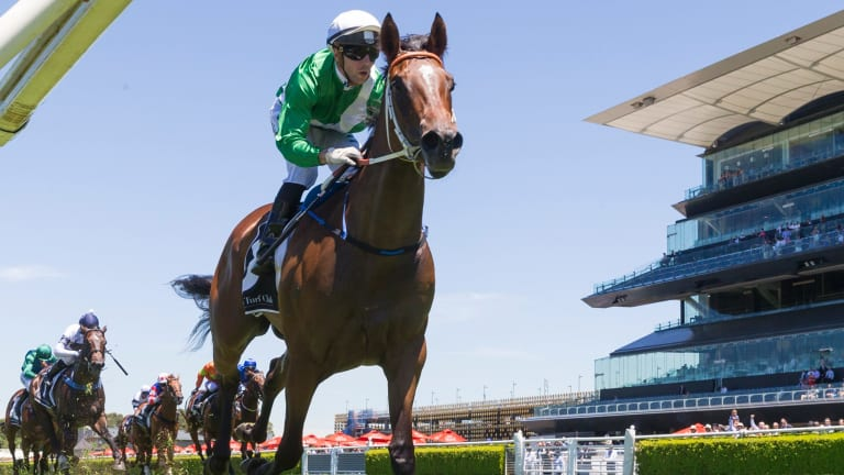 Slipper mission: Impressive type Estijaab is headed to the Silver Slipper where she will clash with boom filly Sunlight.
