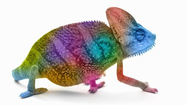 "The next time you're trying to impress a hiring manager or the object of your affection, try subtly mimicking the way they're sitting and speaking — they will probably like you more. Scientists call it the ""chameleon effect""."
