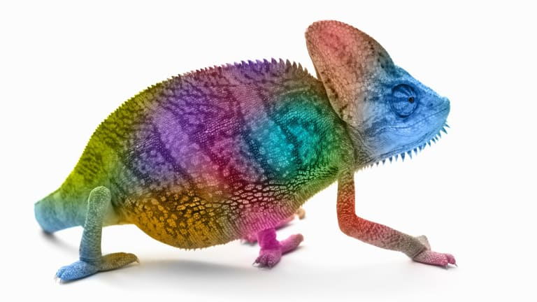 """The next time you're trying to impress a hiring manager or the object of your affection, try subtly mimicking the way they're sitting and speaking — they will probably like you more. Scientists call it the """"chameleon effect""""."""