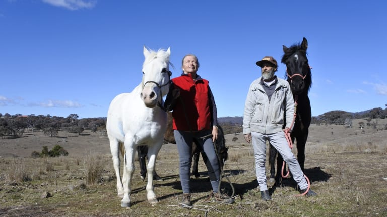 Kerrie and Russell Whitford with their horses at home at Fernleigh Park. The couple are unhappy with drone delivery testing by Project Wing.
