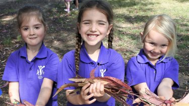 Eliiana Flood,5, Allegra Galleotti , 5 and Ava Thomas-Hepp 6.