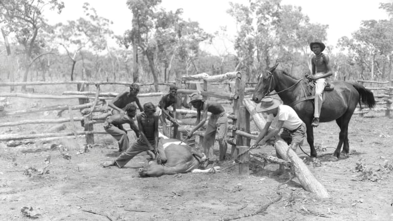 Aboriginal stockmen in the Northern Territory in 1954. It was illegal to pay Indigenous workers until the 1960s.