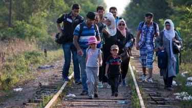 Syrians crossing the border from Serbia into Hungary close to the village of Roszke in recent days.