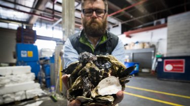 Adam Mehegan, operations manager at South Melbourne Market, one of the enterprises behind the Shuck Don't Chuck project