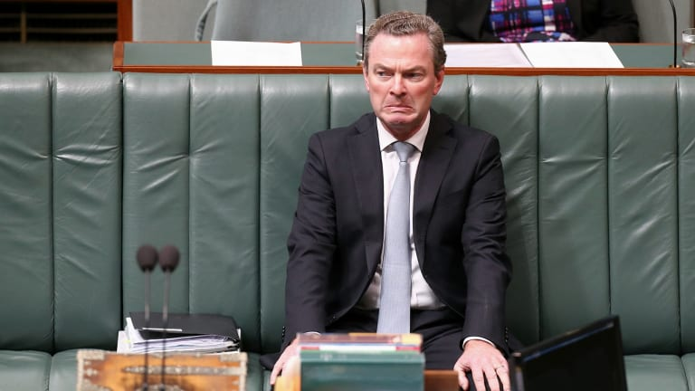 Leader of the House Christopher Pyne grimaced during Question Time.
