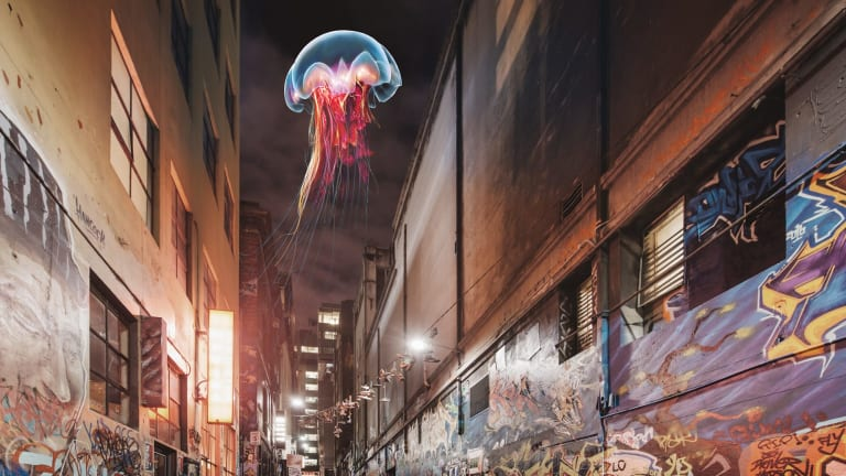 <i>The Medusa</i>, John Fish's recreation of a freshwater jellyfish, will float above the city.