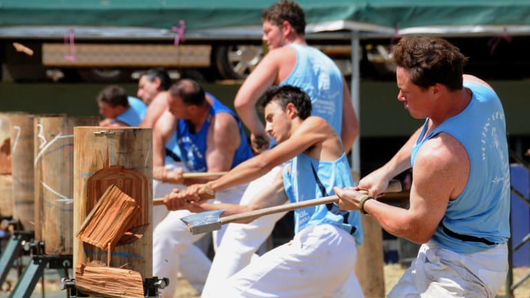 Woodchopping at the Royal Canberra Show.