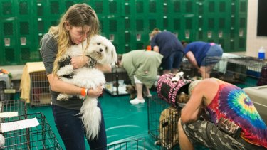 Samantha Belk says goodbye to her Maltese, Gardolf, who, with other pets, is being sheltered from Hurricane Irma in a locker room at John Hopkins Middle School in StPetersburg, Florida, on Sunday.
