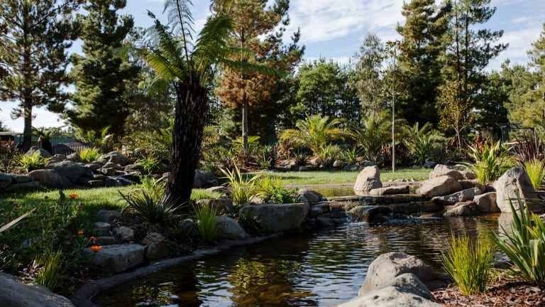 The new area features tropical-themed landscapes including waterfalls, a vast fern gully and picnic and BBQ areas.