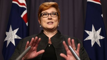 Defence Minister Marise Payne says calls to release an  internal report on mefloquine are misguided and premature.