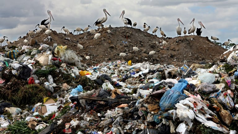 The 'Proximity Principle' is based on the idea that a community that generates waste should also be responsible for its management.