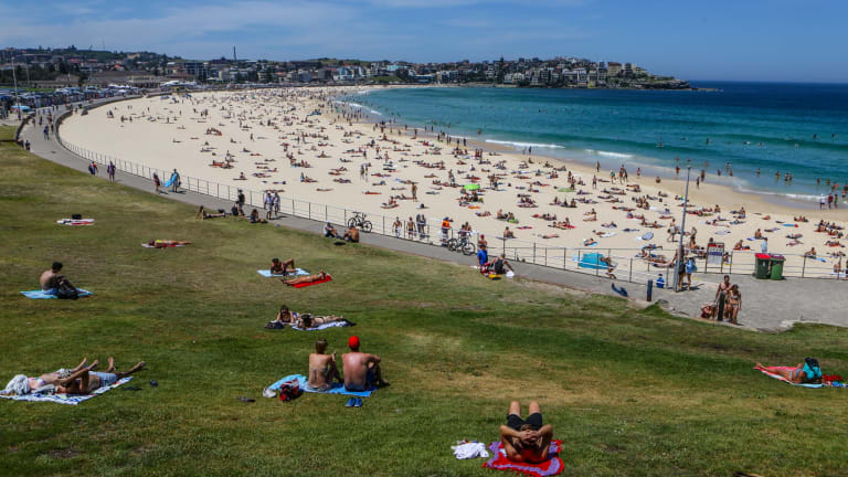 The assaults occurred on Sydney's eastern beaches, including at Bondi.