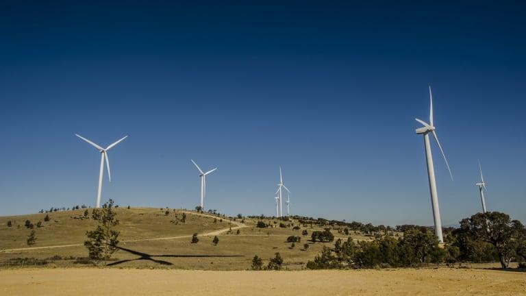 The Capital Wind Farm near Canberra.
