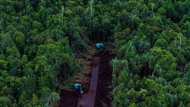 Forest being cleared on Padang Island, Indonesia in 2014.