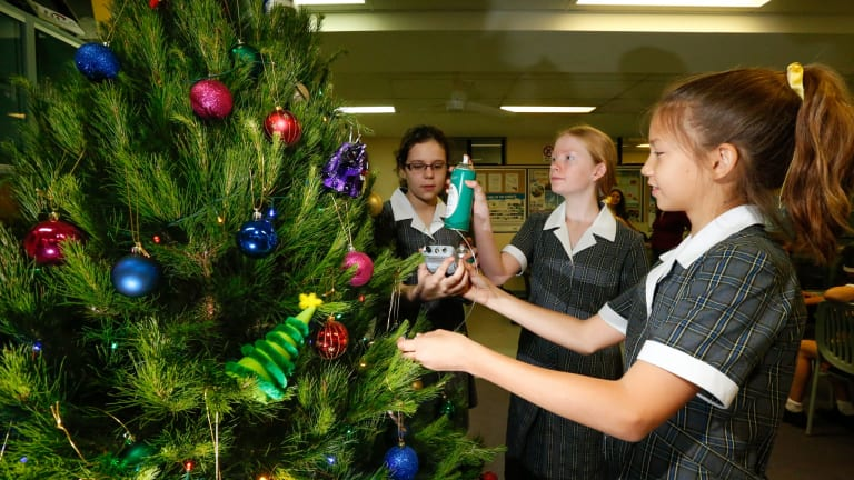 Getting it right: Students Emily Scarlis 11, Lilla Szentmariay, 13, and  Madison - School Students Show Hairspray Keeps Christmas Trees Alive Longest