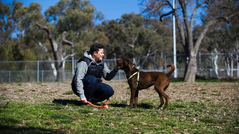 Franklin resident Sharyn Butts with her dog River at the O'Connor dog park, one of few areas in Canberra where dogs are allowed off-leash.
