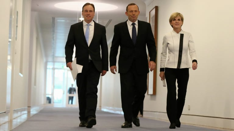 Emissions reduction targets announced by Environment Minister Greg Hunt, Prime Minister Tony Abbott and Foreign Affairs Minister Julie Bishop were quickly overshadowed by the brawl over same-sex marriage.