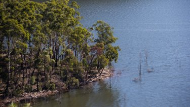 Warragamba Dam currently needs net inflows of about 50 gigalitres of water to spill.