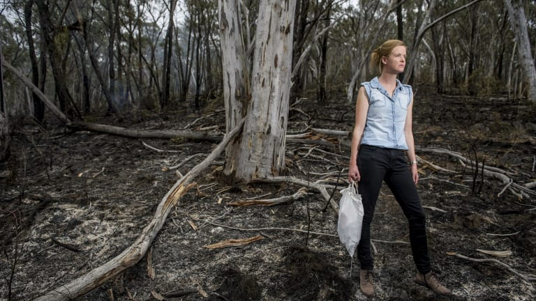 The ANU's Dr Annabel Smith has found current approaches to controlled hazard-reduction burns could have adverse effects on the genetic diversity of animal and plant populations.