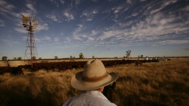 Gina Rinehart's joint bid for S. Kidman & Co's cattle stations has jumped its final hurdle.