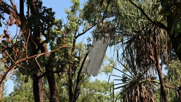 Part of the light plane's wing can be seen hanging from a tree.
