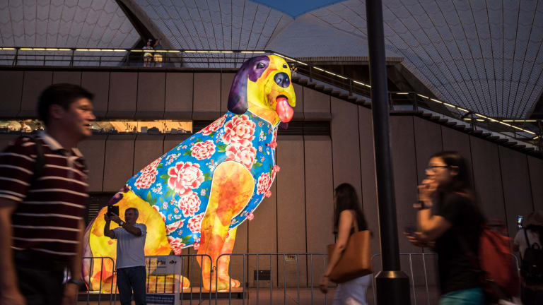 Song Ling's Dog lantern outside the Sydney Opera House for Chinese New Year.