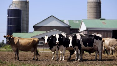 The US has withdrawn an offer it had made to Australia in 2014 on dairy access.