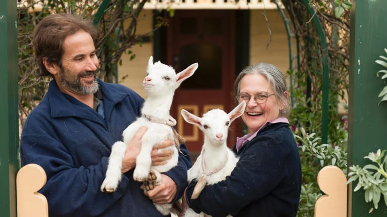 Corinne and Peter Blacket run Drysdale Cheeses.