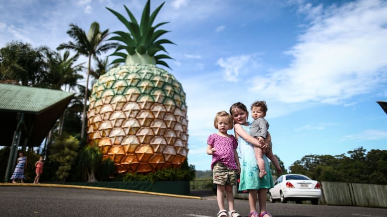 New plans are emerging for the Big Pineapple in Woombye near Nambour.