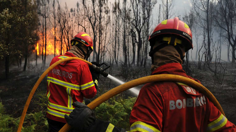 Bombeiros fight to stop the forest fire from reaching the village of Figueiro dos Vinhos. The wildfires claimed 64 lives.