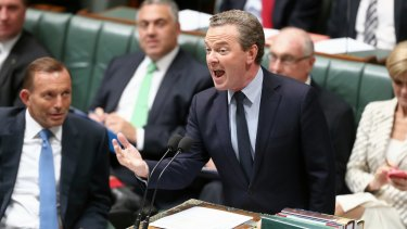 Christopher Pyne during question time on Tuesday.