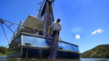 Gary Howard trawls for school prawns using  inshore trawl and static nets.
