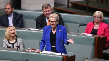 Bronwyn Bishop delivered her farewell speech to Parliament House on Wednesday.