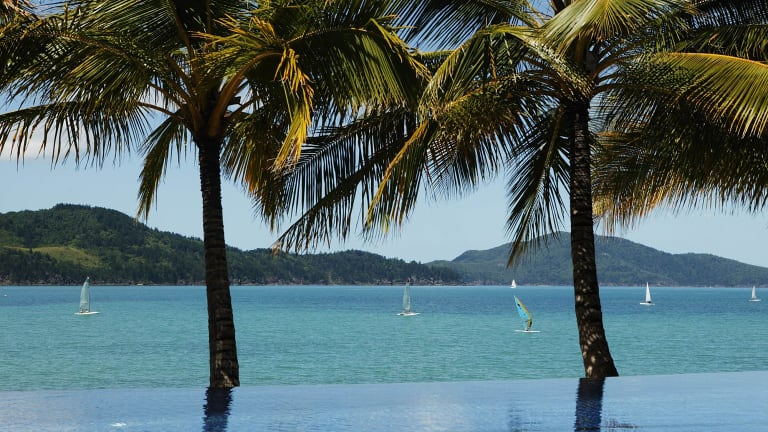 Hundreds of wild animals have been culled at Hamilton Island, in the Whitsundays.