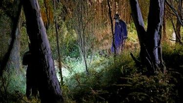 The crime scene in bushland at Donvale.