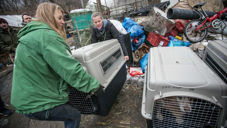 Lola Webber, left, Humane Society International's campaign manager for South Korea and Abby Hubbard, deputy director of the Animal Welfare League of Alexandria, carry a rescued dog in a crate.